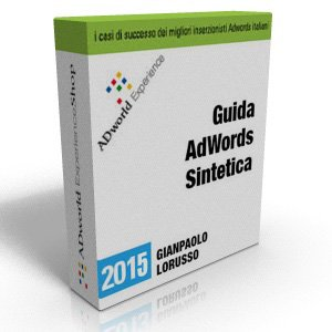 box-Guida-AdWords-Sintetica-2015
